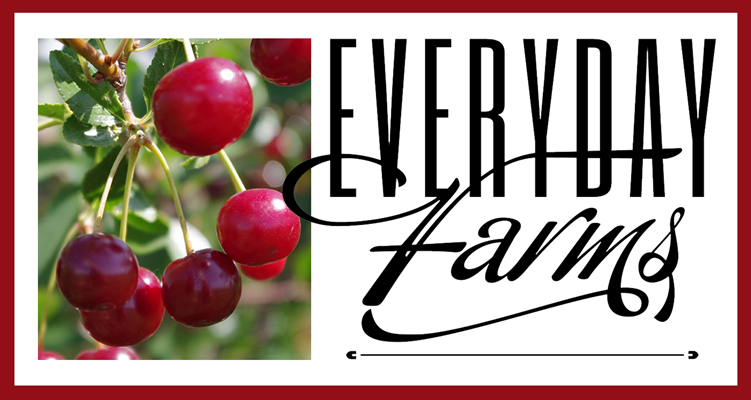 Everyday Farms Logo